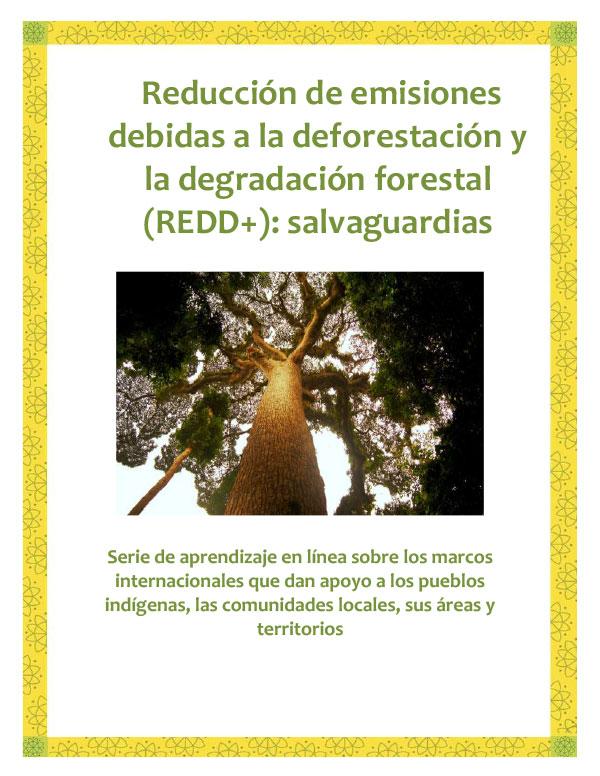 REDD-Safeguards-Spanish